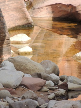 Reflection in Zion